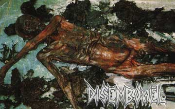 bodies decomposing
